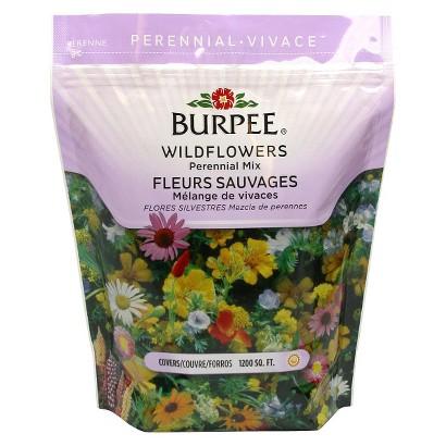 Wildflower Bag Burpee-  Perennial