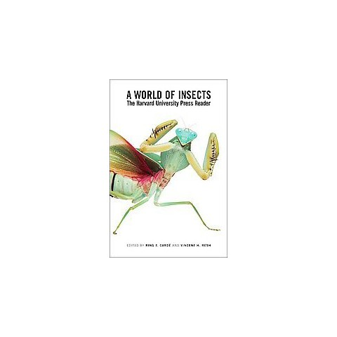 A World of Insects (Paperback)