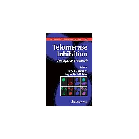 Telomerase Inhibition (Paperback)