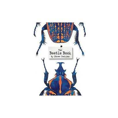 The Beetle Book (Hardcover)