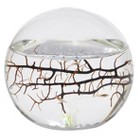 EcoSphere Small Sphere - 4 inch