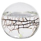 EcoSphere® Small Sphere - 4 inch