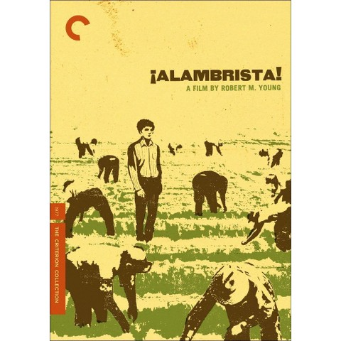 Alambrista! (Criterion Collection) (R) (Widescreen)