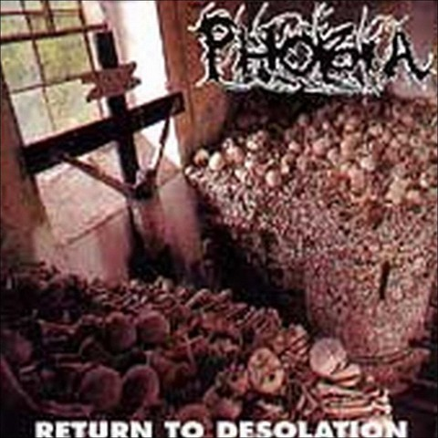 Return to Desolation