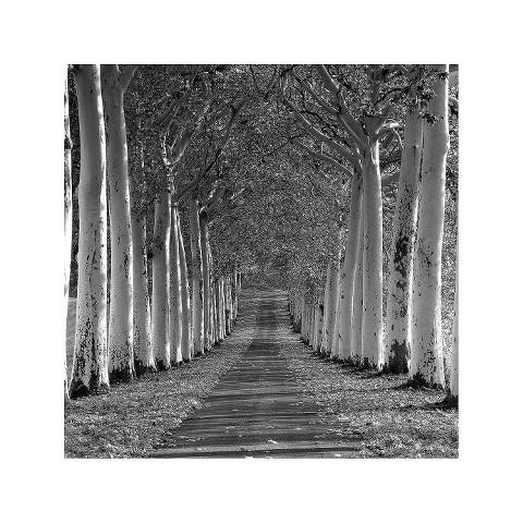 Art.com - Epernay, France