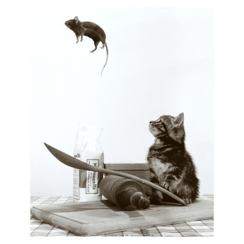 Art.com - Cat and Mouse