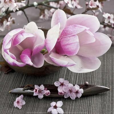 Art.com - Magnolia Art Print