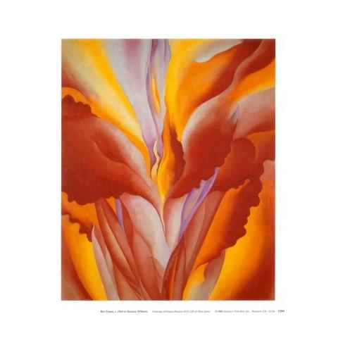 Art.com - Red Canna Art Print