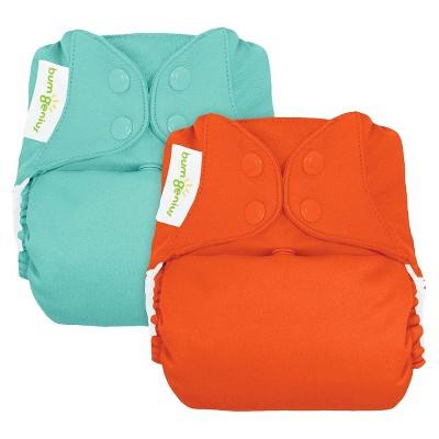 bumGenius Freetime All-In-One Snap (2 Pack) - Neutral