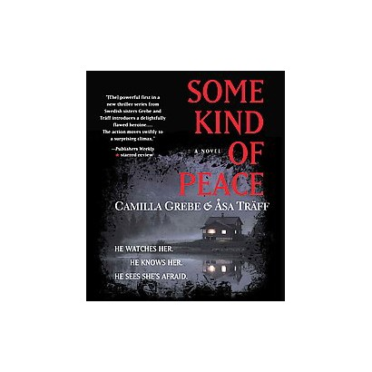 Some Kind of Peace (Unabridged) (Compact Disc)