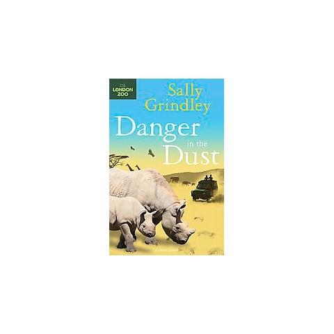 Danger in the Dust (Paperback)
