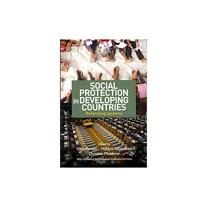 Social Protection in Developing Countries (Paperback)