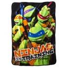 Teenage Mutant Ninja Turtles® Throw - Ninja In Training