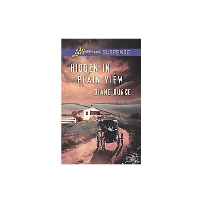 Hidden in Plain View (Paperback)
