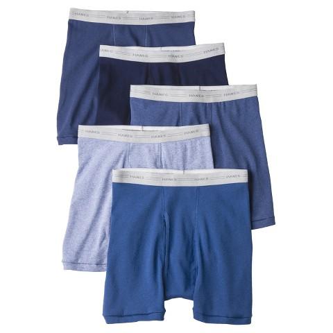 Hanes® Men's 5pk Boxer Briefs - Blue
