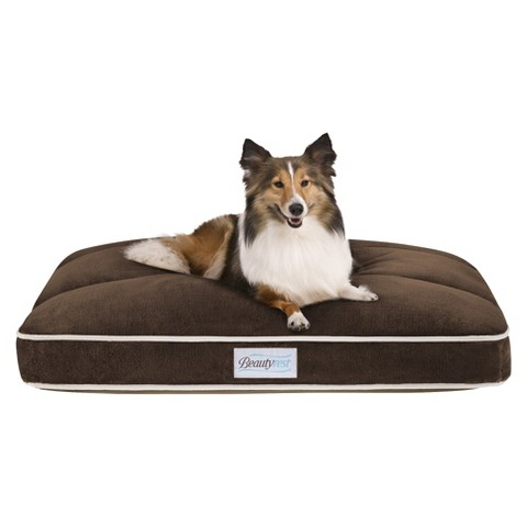 "Beautyrest Channel Top Napper - Chocolate (27x36"")"