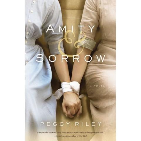 Amity & Sorrow (Hardcover)
