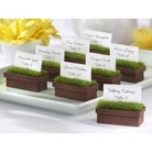 Evergreen Window Planter Place Card/Photo Holder (Set of 4)