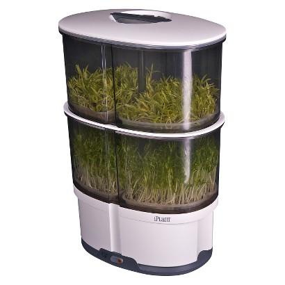 iPlant Second level sprout garden