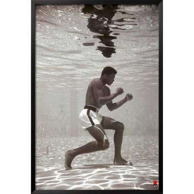 Art.com - Ali Underwater Framed Poster