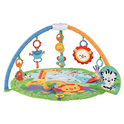 Fisher-Price Signature Style Gym