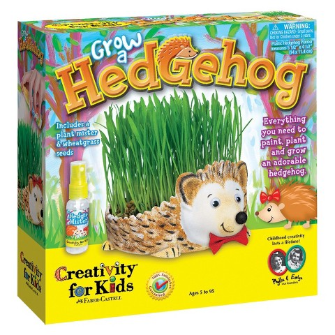 Creativity for Kids Grow A Hedgehog