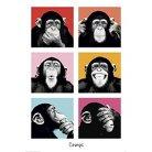Art.com - The Chimp - Pop Poster