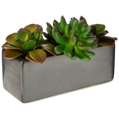 "Threshold™ Faux Succulents in Black Ceramic Planter -  5x8.5x5"""
