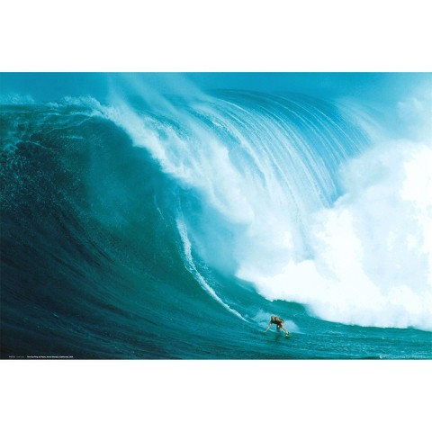 Art.com - Wave Rider