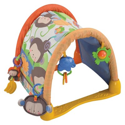 Fisher Price My Little SnugaMonkey Kick 'n Crawl Gym