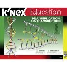K'NEX® Education DNA Replication and Transcription Set