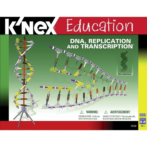 K'NEX® Education DNA Replication and Transcription Set