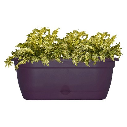 "Bloem 18"" Lucca Window Box Planter"