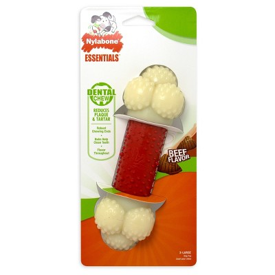 Nylabone Daily Dental Treat Toy Fill & Freeze 1 ct