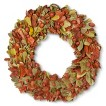 Smith & Hawken ® Putka Leaf Dried Fall Wreath 21.25