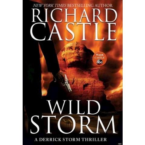 Wild Storm: A Derrick Storm Thriller (Hardcover) by Richard Castle