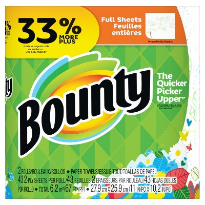 Bounty Printed Paper Towels 2 Big Rolls