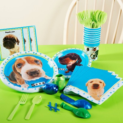 The Dog Party Pack for 16 - Multicolor