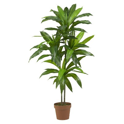 "Nearly Natural 48"" Dracaena Silk Plant (Real Touch)"