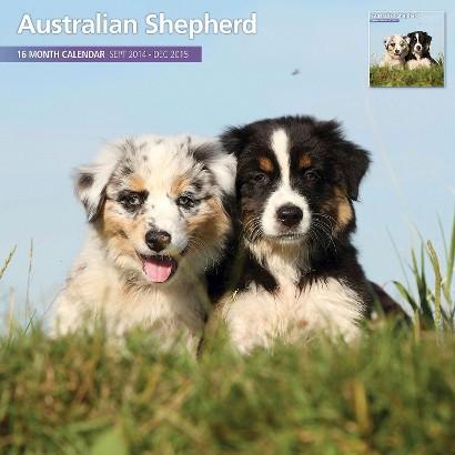 Australian Shepherd 2015 Wall Calendar