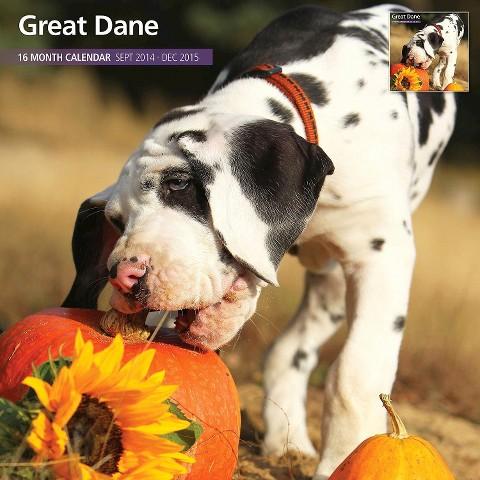 Magnet™ & Steel Great Dane Dog 2015 Wall Calendar