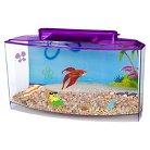 SpongeBob Betta Bow 0.7 Gallon Tank Aquarium Kit from Penn-Plax