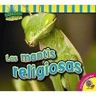 Las mantis religiosas / The Praying Mantis (Hardcover)