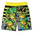Toddler Boys' Teenage Mutant Ninja Turtles Swim Trunks
