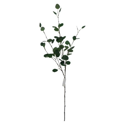 Threshold™ Eucalyptus branch