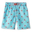 Boys' Flamingo Swim Trunks