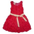 Infant Toddler Girls' Sleeveless Rosette Dress
