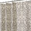 InterDesign Twigz Shower Curtain