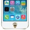 Agent 18 Home Button Gold Skull Cell Phone Charm - Gold (3AHB-338)