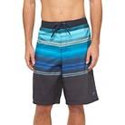 Speedo Men's Horizon Ombre Board Short - Blue